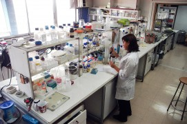 <p>Laboratorio en la Universidad de Chile.</p>