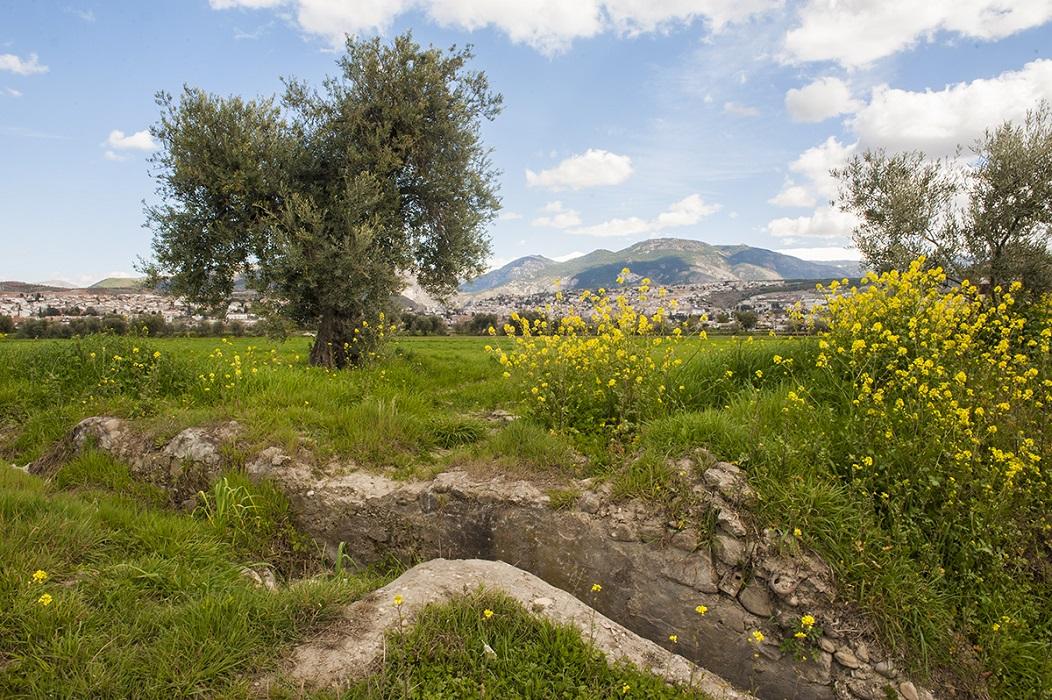<p>Restos de una antigua acequia en la Vega Sur.</p>