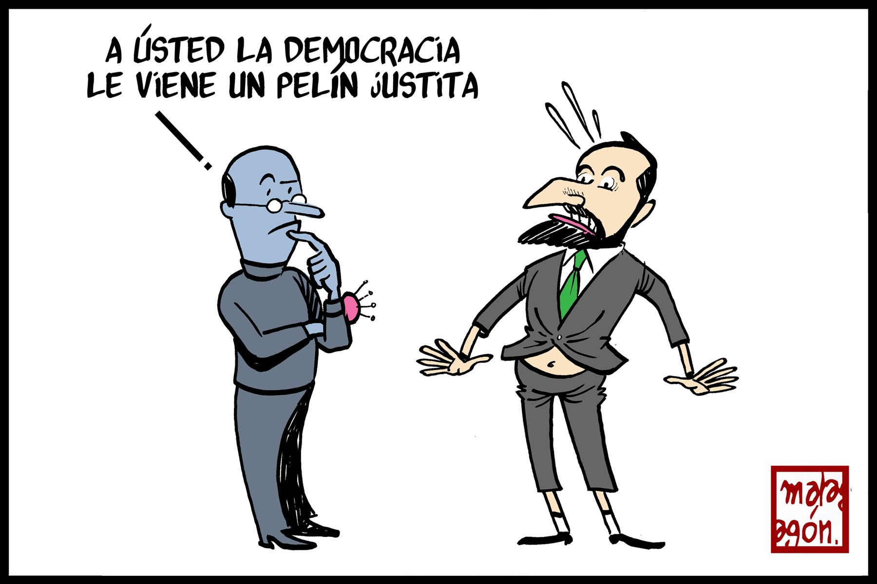 <p>Justito de democracia.</p>